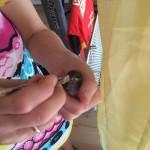 Karli, der kleine Spatz