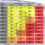 Temperaturen_Innenraum_Tier_im_Auto