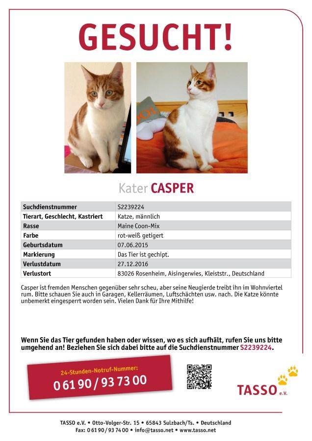 Ziemlich Verlorene Katze Flyer Vorlage Bilder - Beispiel ...