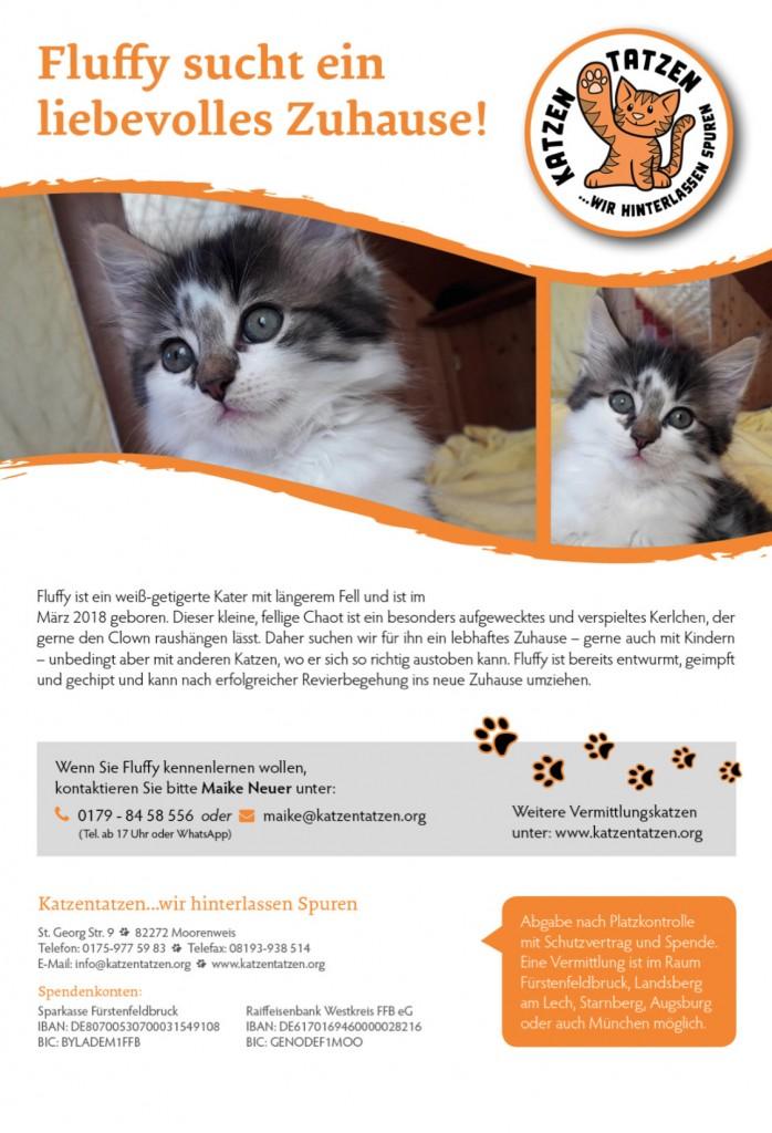 18-6 Katzentatzen Fluffy
