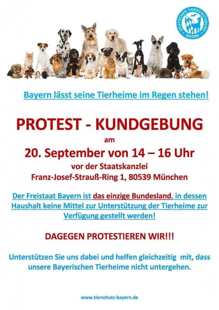 18-8 Tierschutzbund Demo vor Landtag