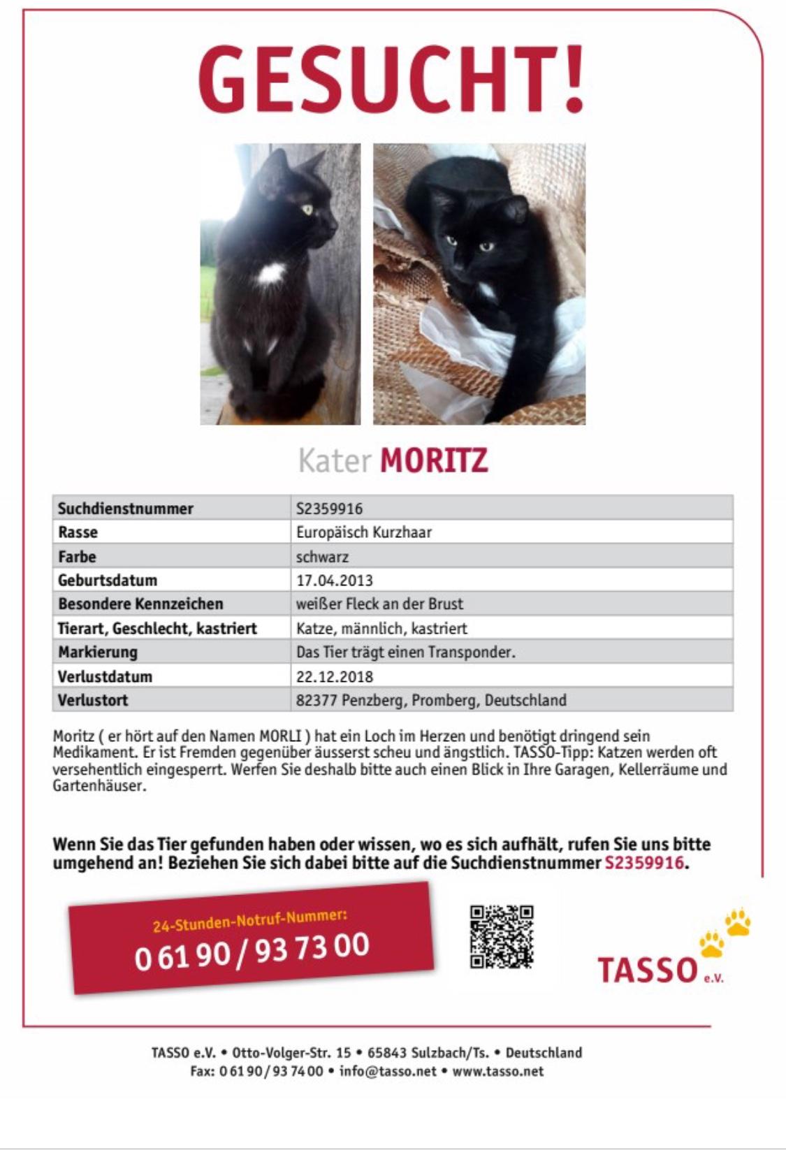18-12Vermisster Moritz