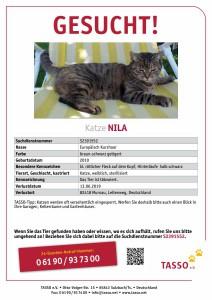 TASSO_Suchplakat_Katze Nila-S2391552