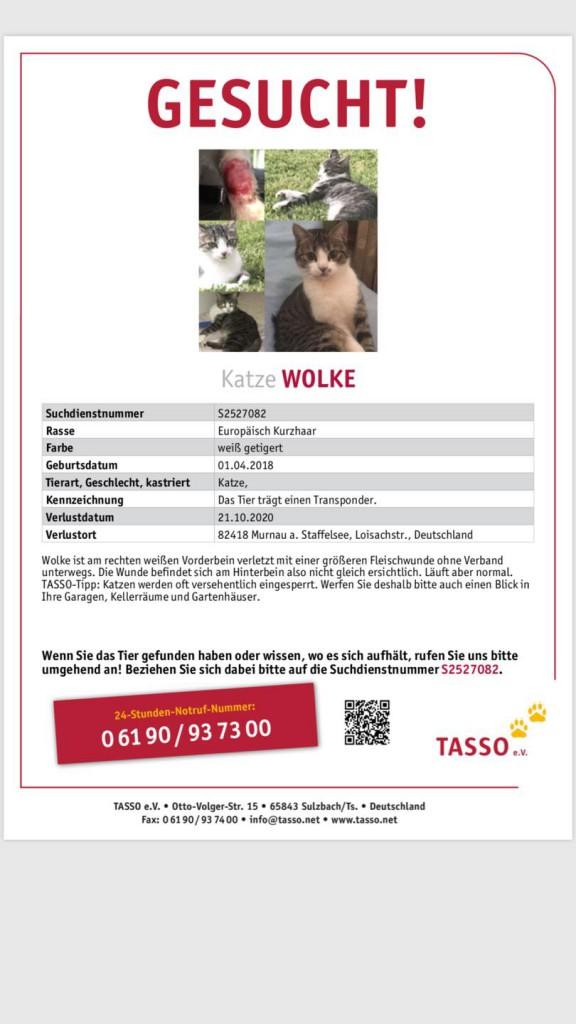 2020-10- Suchplakat Katze Wolke Murnau