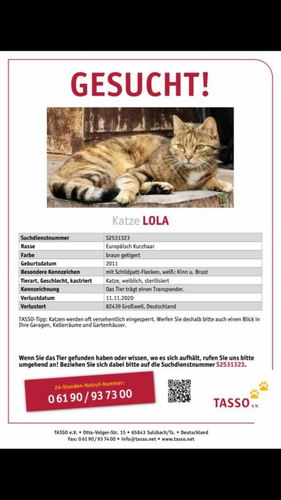2020-11-Suchplakat Lola