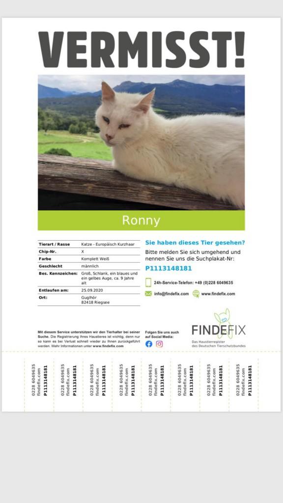 2020-11 Suchplakat Ronny