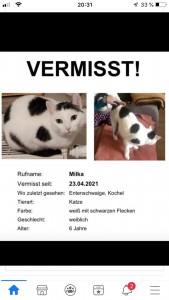 21-5-vermisste Katze Milka