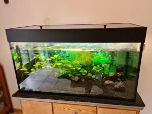 21-7-aquarium2